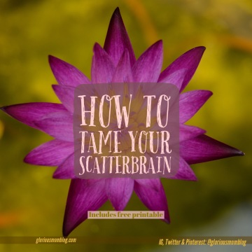 How to tame your scatterbrain: tips  to help you be more focused snd productive. Read more at gloriousmomblog.com.